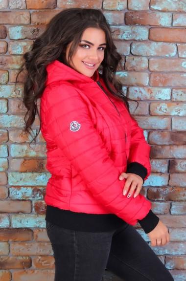 Куртка плащевка с капюшоном EKS-816A13