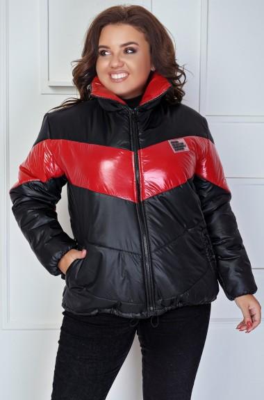 Двухцветная куртка DV-AR2781A450